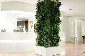 giardini interni casa giardini interni e pareti in verde verticale