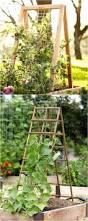 vertical vegetable garden planters u2013 satuska co