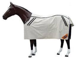 sprintwell u2013 equestrian online