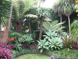 Kitchen Garden Designs Kitchen Garden Design Tropical Landscape Design Plans Garden