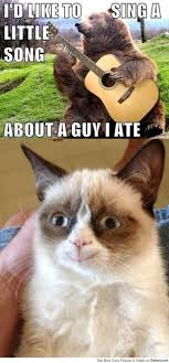 Grumpy Cat Meme Images - grumpy cat poem memes google search grumpy cat pinterest