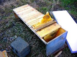Bush Bees Foundationless Frames Top Bar Hive Long Hives