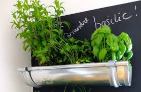 indoor herb garden ideas 7 indoor herb garden ideas that are totally irresistible herb scoop