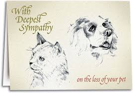 the loss of a pet loss of pet sympathy folding card smartpractice veterinary