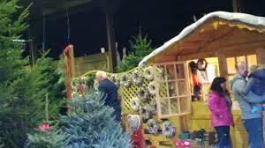 visit us the christmas tree farm