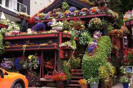 seattle flowers the flower house on alki seattle wa just amazing to