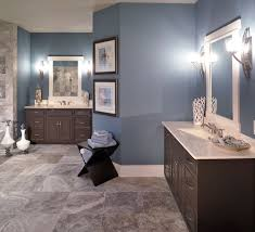 trust our instinct steel blue bathroom paint color magnificent