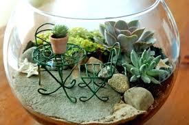 cactus mini garden ad adorable miniature terrarium ideas for you
