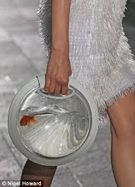 rspca slams central martins graduate for goldfish bowl