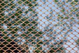 Decorate A Chain Link Fence Chain Link Fence Background Rusty On A Green Foliage For