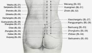 study of acupuncture for low acupuncture for lower back hawkes physiotherapy