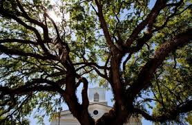 100 Best Small Towns To Visit Martin County Florida Travel by Florida U0027s Small Town Downtowns Life As It Was And As It Remains