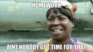 Homework Meme - homework meme by zoruaxguy2013 on deviantart