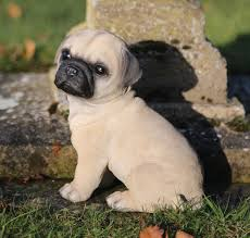 uk garden supplies pug puppy garden ornament pug garden ornaments