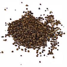 Mustard Seed Home Decor 200pcs Cianita Mini Suculentas Semear Vaso Flores Indoor Home Decor