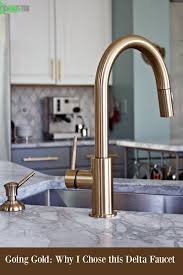 faucet kitchen delta gold trinsic kitchen faucet chic and functional in