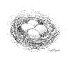from the lost sketchbook the very last one u2014a bird u0027s nest the