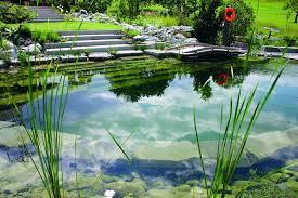 Natural Swimming Pool Natural Swimming Pool Design Home Decor Gallery