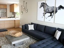 Hgtv Contemporary Living Rooms by Cathy Hobbs U0027 Design Portfolio Charcoal Sofa Concrete Coffee