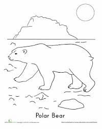 polar bear color page polar bear coloring page polar bear worksheets and bears