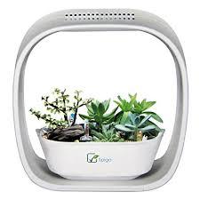 growing herbs indoors under lights amazon com spigo indoor led light grow garden pearl white