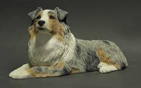 dogs australian shepherd boxed by sandicast sculpture