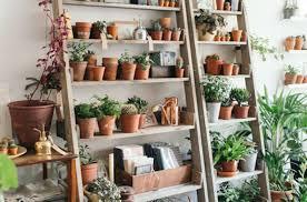 interior garden wall shelving 99 best gardening wall images on pinterest amazing