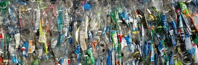 bioplastic research paper the future of plastics curious