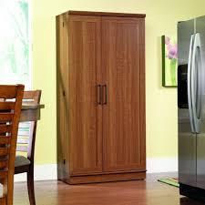 kitchen storage cupboards ideas kitchen pantry ideas interesting pantry storage cabinet system
