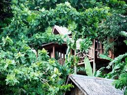 phi phi sunset bay resort phi phi don thailand booking com