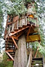 Cool Tree Houses 10 Incredible Houses From Your Dreams Beautiful Tree Houses