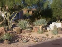 Desert Backyard Ideas Desert Backyard Design Desert Landscaping Ideas For Front Yard