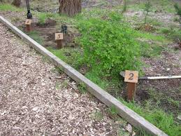 native plant project community habitat restoration project chrp lwcc