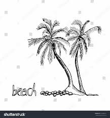 palm trees hand drawn outline sketch stock vector 671099974