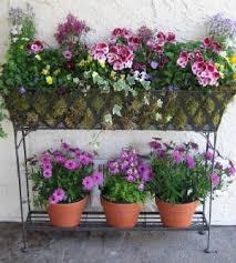 Indoor Garden Containers - 744 best container garden glory images on pinterest flowers
