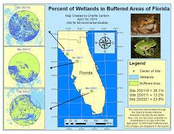 Florida Wetlands Map by Gis Portfolio Charles L Carlson