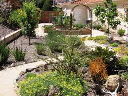 basic natural desert landscaping ideas for beginners house