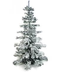 tree 240cm
