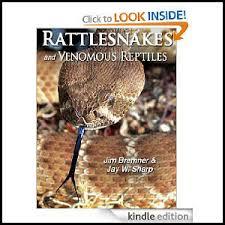 How To Avoid Snakes In Backyard How To Keep Rattlesnakes Away Desertusa