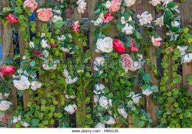 Fake Roses Fake Roses Stock Photos U0026 Fake Roses Stock Images Alamy
