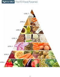 fd fighter diet pyramid understanding the food pyramid