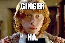 Ron Weasley Meme - ginger ha ron weasley quickmeme