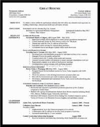 Examples Of Strong Resumes by Examples Of Resumes Popeyes Job Application 2016 The Abs Workout