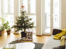 Half Price Christmas Decorations Uk by 14 Best Real Christmas Trees The Independent