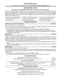 Paramedic Sample Resume by Marketing Executive Resume Samples Free Free Samples Examples