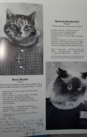 cat yearbook quite possibly the most awesome thing you will see today cat high