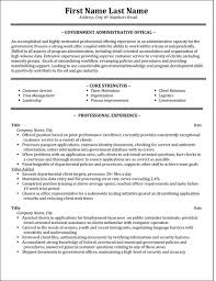Sample Resume For Government Position by Government Resume Examples