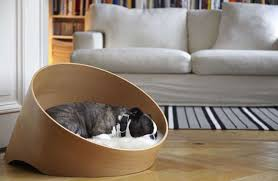 curvacious wooden dog beds covo pet bed