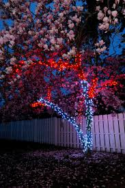 Best Outdoor Christmas Decorations by Christmas Lights Ravishing Select The Best Outdoor Christmas