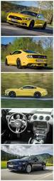 All Black Mustang 5 0 Best 20 Ford Mustang V8 Ideas On Pinterest Mustang Ford Ford